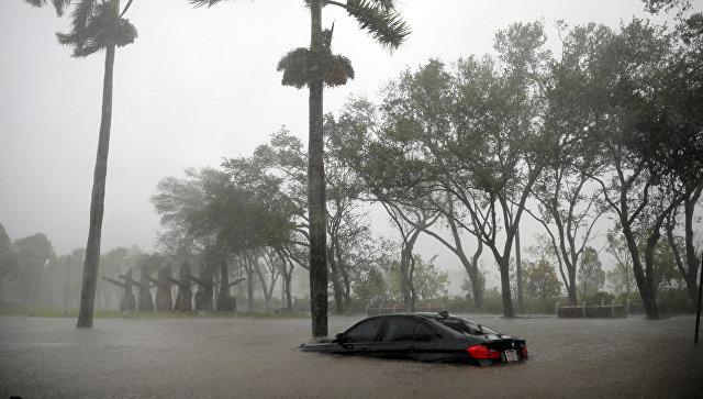 Ирма видео сейчас. Прямая трансляция. Куда пойдет ураган?