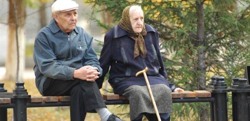 Что может позволить себе купить пенсионер